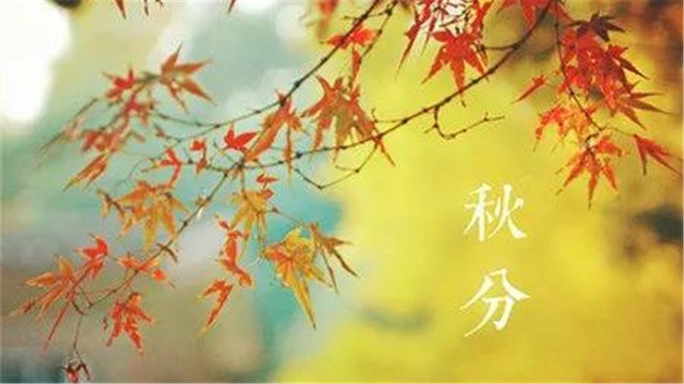 秋分丨暑退秋澄转爽凉,日光夜色两均长