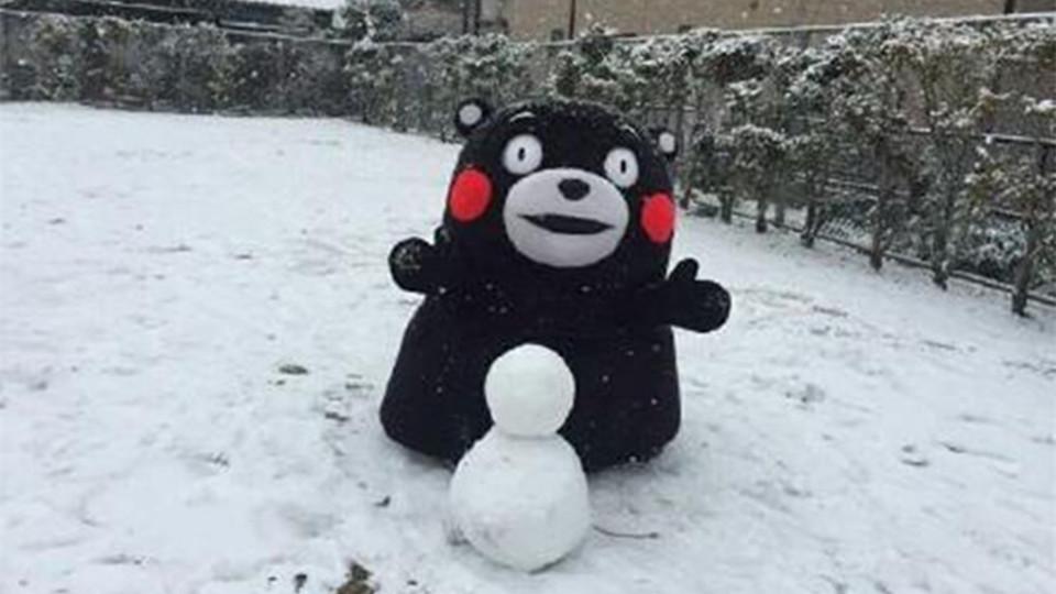 什么?!下雪了?今年冬天会冷吗?